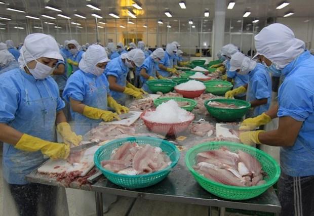 越南水产品出口仍面临许多困难 hinh anh 1