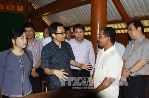武德儋副总理:西原地区各省需加大登革热防控力度 hinh anh 3
