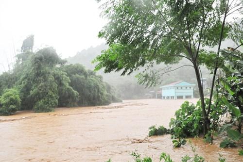 一号和二号台风袭击越南经济损失高达3亿美元 hinh anh 1