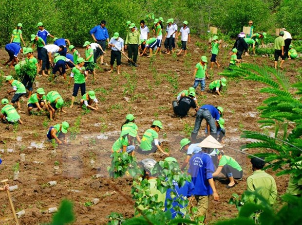 越南拟制定2030年前气候变化《巴黎协议》实施计划 hinh anh 1