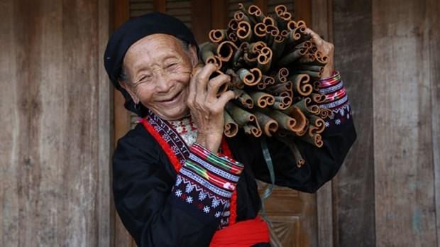 澳大利亚为越南妇女推出250万澳元的帮扶项目 hinh anh 1