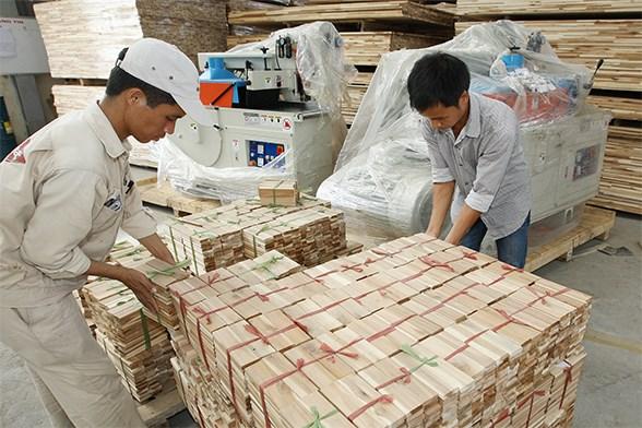 中国和美国超越老挝成为越南最大木材出口国 hinh anh 1