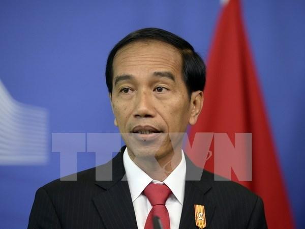 印度尼西亚大力吸引外资 hinh anh 1
