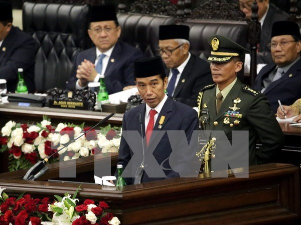 印尼总统:印尼将积极寻求和平方式解决地区海洋岛屿争端问题 hinh anh 1
