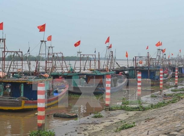 越南政府副总理郑廷勇:在台风应对工作中千万不能主观和被动 hinh anh 1