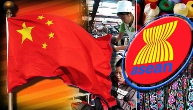 第13届中国—东盟博览会下月在中国广西南宁举行 hinh anh 1