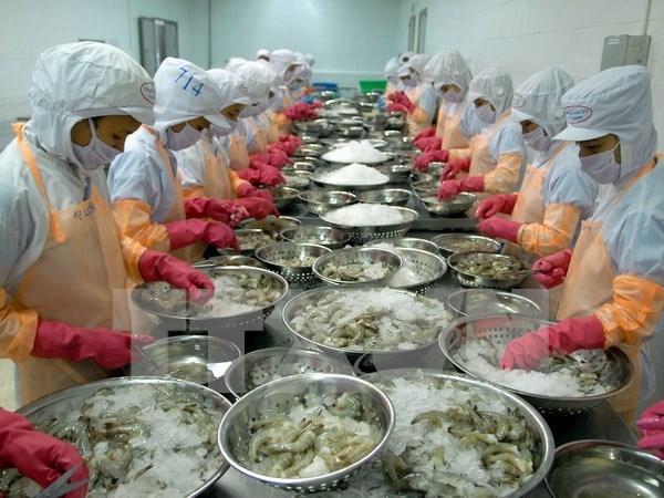 2016上半年越南对中国水产品出口额达3.84亿美元 hinh anh 1