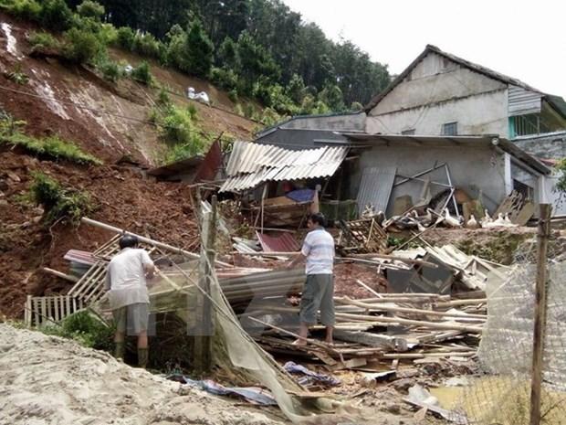 第3号台风造成9人死亡8人受伤 hinh anh 1
