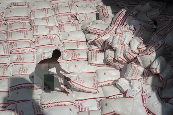 泰国政府正考虑暂停国储大米销售 hinh anh 1