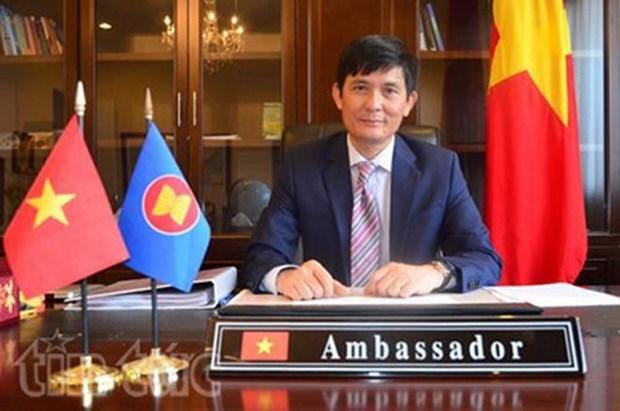 29届外交会议:文化外交助推越南与各国的友好关系 hinh anh 1