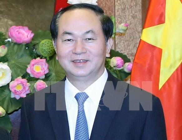 越南国家主席陈大光与夫人今日启程对文莱达鲁萨兰国进行国事访问 hinh anh 1