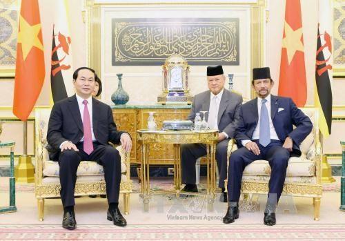 越南国家主席陈大光与文莱苏丹哈桑纳尔•博尔基亚举行会谈 hinh anh 2