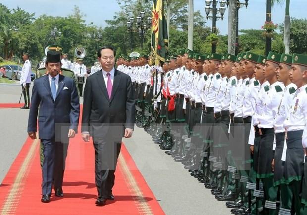 越南国家主席陈大光与文莱苏丹哈桑纳尔•博尔基亚举行会谈 hinh anh 1