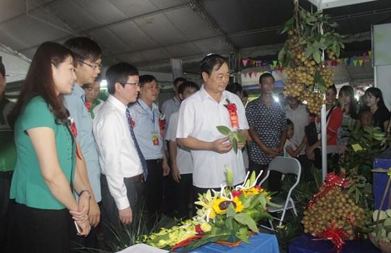 2016年越南东北地区农业贸易展在太原省开展 hinh anh 1