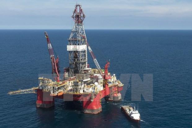 保护海洋环境:为沿海地区发展带动偏远地区发展注入动力 hinh anh 3