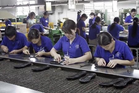 塑造越南企业的创业精神 hinh anh 2
