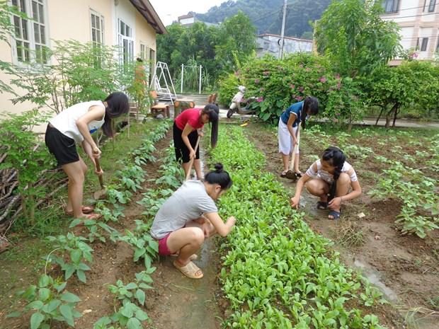 越南政府和国际组织携手帮助获解救的被拐受害者重新融入社会 hinh anh 4