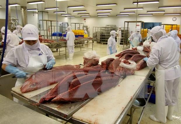 越南商品进军欧盟市场面临什么挑战 hinh anh 1