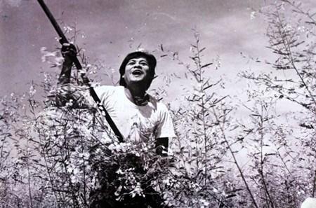 印度电视台首次播出越南电影 hinh anh 1