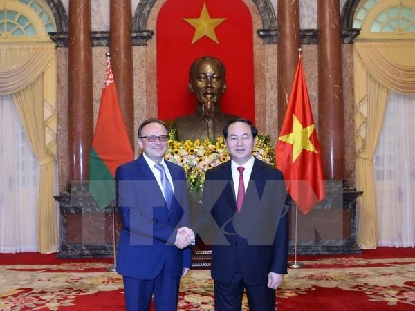 国家主席陈大光接受五国新任驻越大使递交国书 hinh anh 2