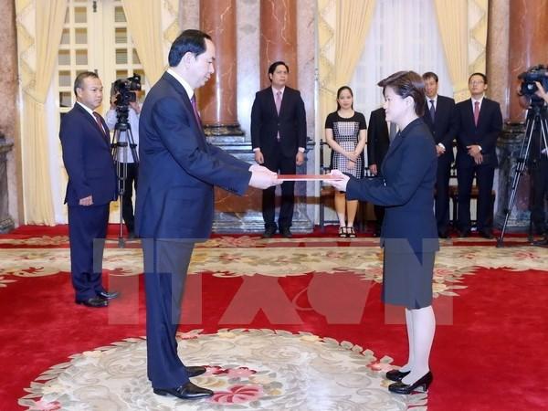 国家主席陈大光接受五国新任驻越大使递交国书 hinh anh 4