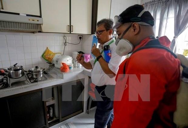 新加坡新增寨卡病毒病例为17例 hinh anh 1