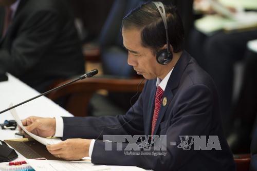 印尼总统佐科·维多多呼吁东盟各国加强经济合作 hinh anh 1