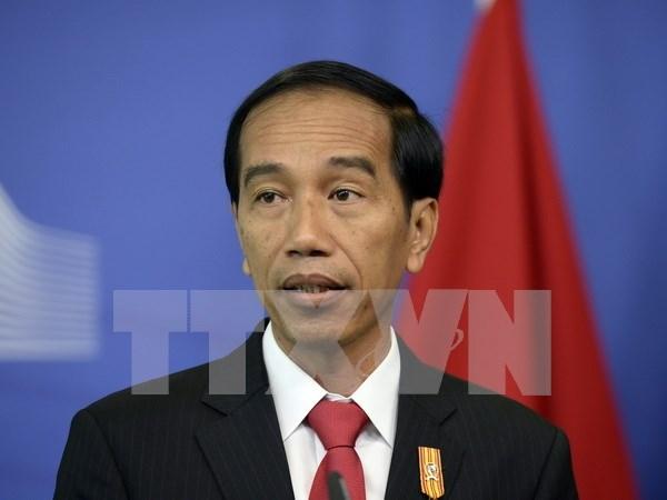 印尼总统佐科·维多多高度评价东盟与日本合作关系 hinh anh 1