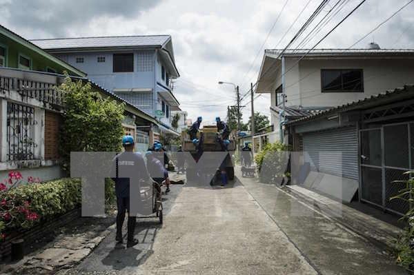泰国曼谷发现21宗寨卡病例 hinh anh 1