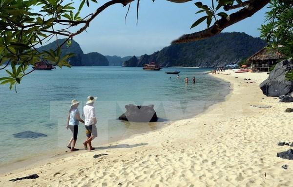 越南拟将吉婆群岛纳入下龙湾并准备材料进行申遗 hinh anh 1
