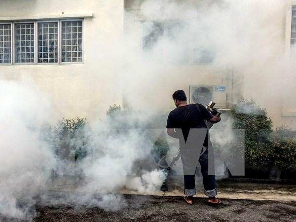 马来西亚新确诊2例寨卡感染病例 hinh anh 1