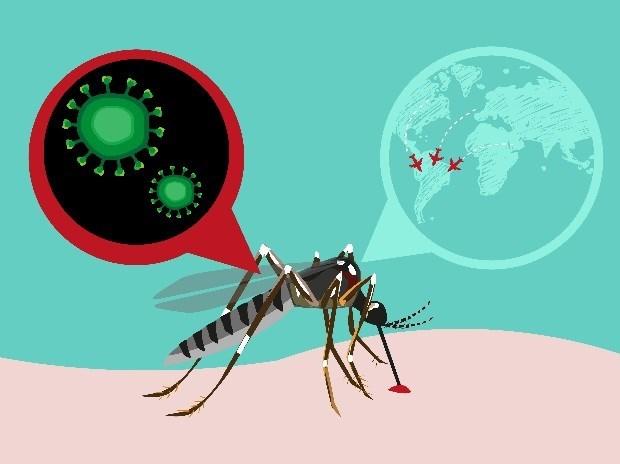 日本东京发现一名越南公民感染寨卡病毒 hinh anh 1