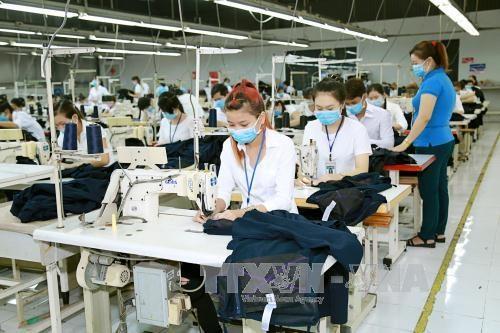 越南纺织行业劳动生产率位居世界前列 hinh anh 1