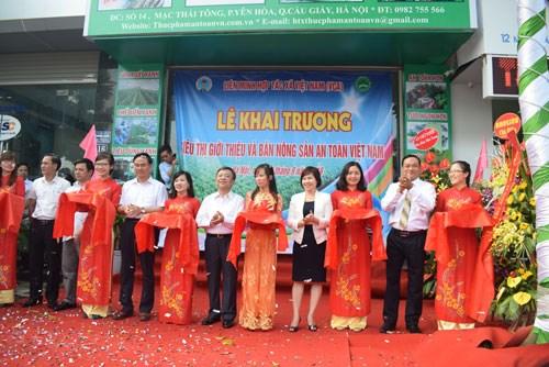 越南安全农产品销售合作社联盟成立 hinh anh 1