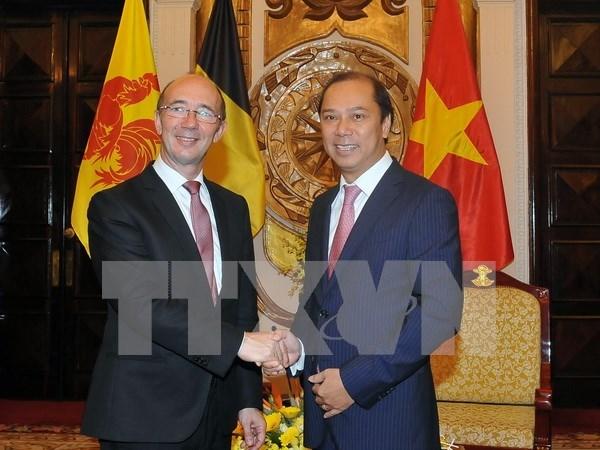推动越南与瓦隆大区及法语区联邦合作计划有效开展 hinh anh 1