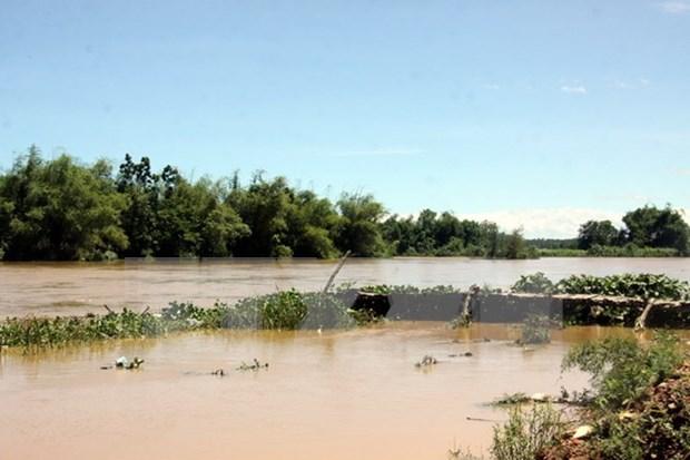 第四号台风侵袭越南引发洪水 造成重大人员和财产损失 hinh anh 1