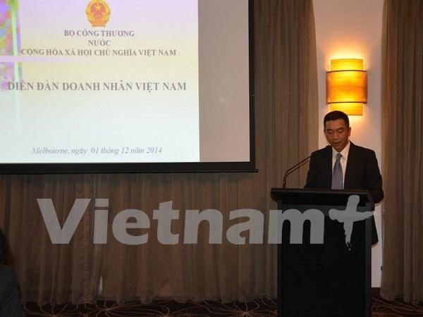 越南驻悉尼总领事:越澳关系在各个领域不断向更深更广方向发展 hinh anh 1