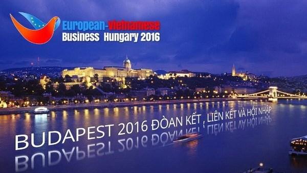 第10届旅欧越桥企业论坛在匈牙利举行 hinh anh 1