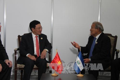 越南政府副总理兼外长范平明与各国元首和领导人进行双边会晤 hinh anh 1