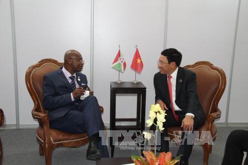 越南政府副总理兼外长范平明与各国元首和领导人进行双边会晤 hinh anh 2