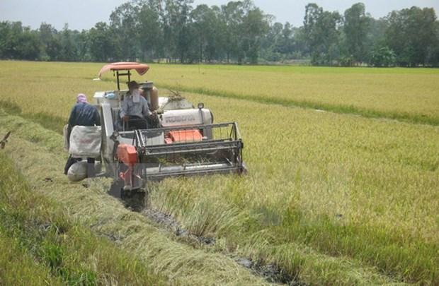 保护自然资源 促进九龙江三角洲地区可持续发展 hinh anh 1