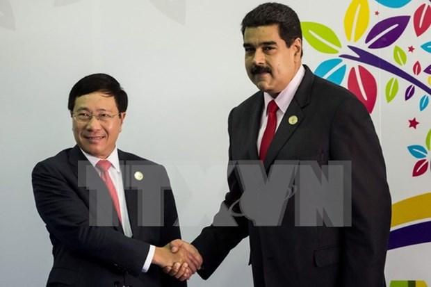 范平明副总理会见委内瑞拉总统和伊拉克外长 hinh anh 1