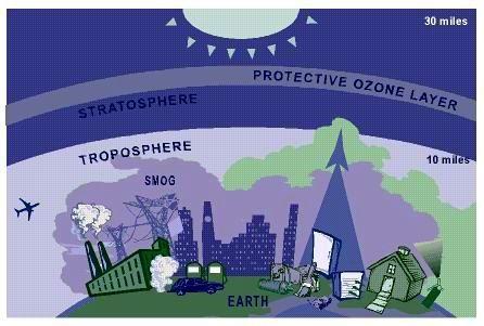 越南在恢复臭氧层和空气质量工作中取得诸多成效 hinh anh 1