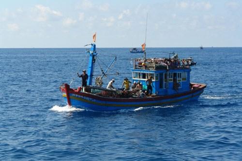 越南平顺省采取强有力措施 加强保护和恢复水产资源 hinh anh 1