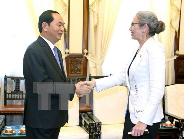 国家主席陈大光会见荷兰驻越南大使Nienke Trooster hinh anh 1