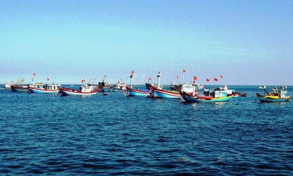 越中举行海上低敏感领域合作专家工作组第九轮磋商 hinh anh 1