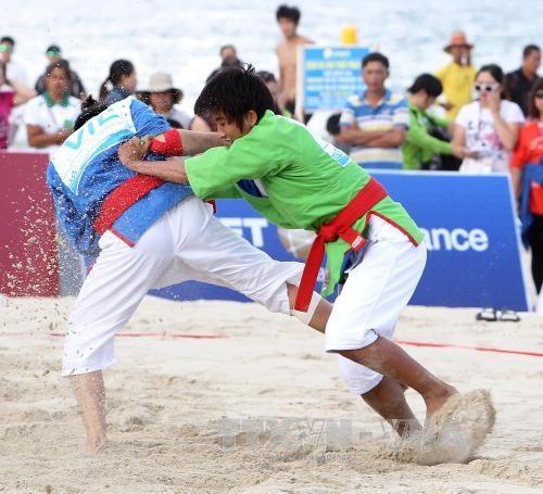 第五届亚洲沙滩运动会第一天:越南队夺取三枚金牌 hinh anh 1