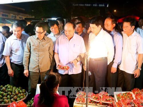 阮春福总理赞同河内市成立确保食品安全的快速反应机构 hinh anh 2