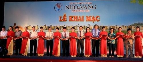 2016年宁顺省葡萄和葡萄酒与美食展销会正式开幕 hinh anh 1