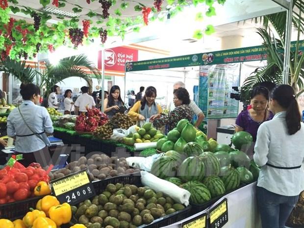 2016年越南蔬果出口额可达近26亿美元 hinh anh 1
